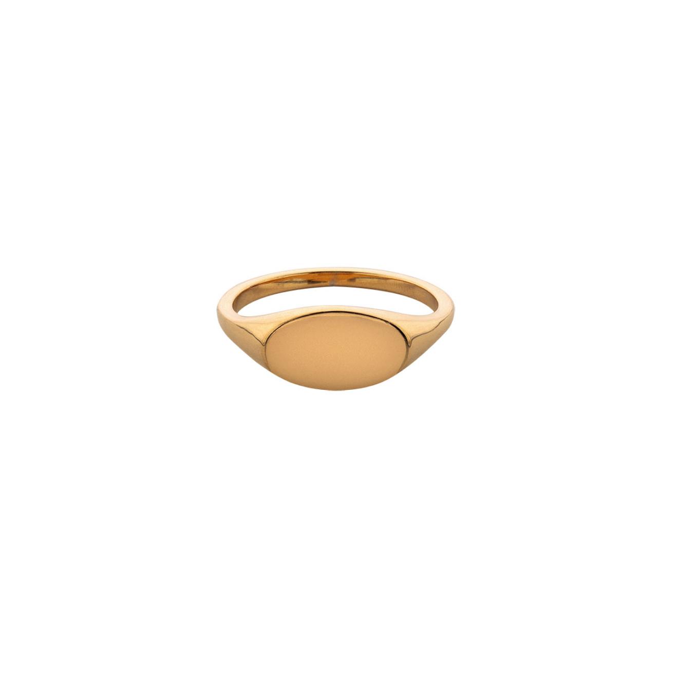 Ringstone Позолоченное кольцо-печатка Blank из серебра